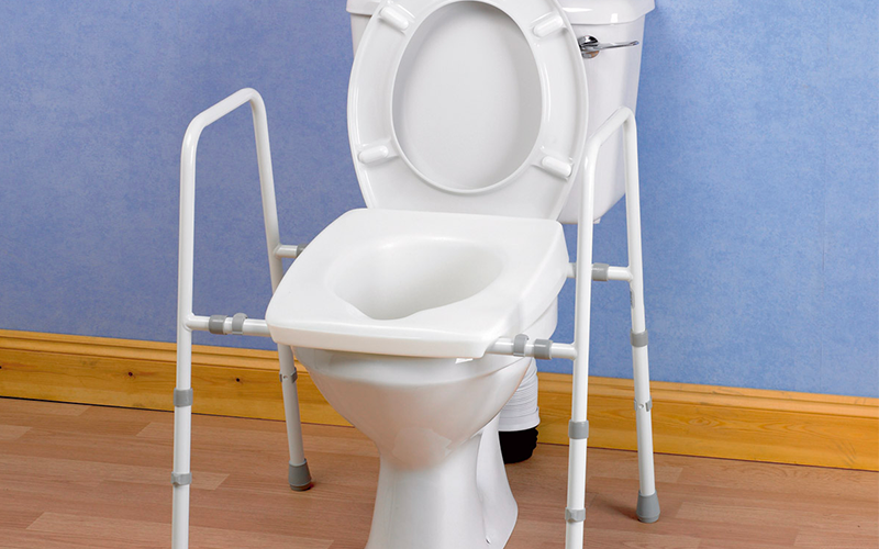 Toilet frame support in place around a toilet