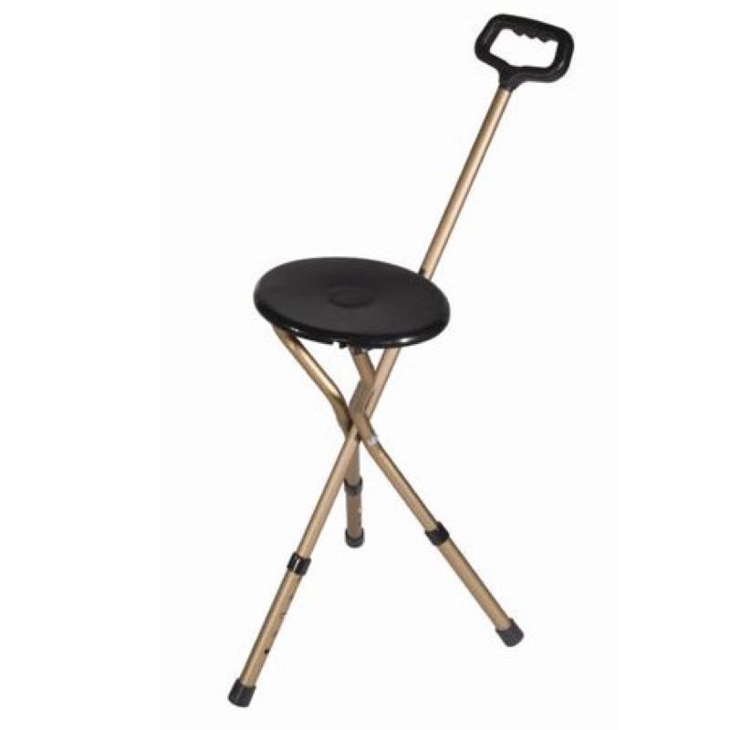 Adjustable Walking Stick/Seat