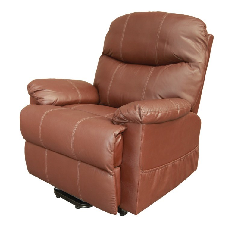Z-TEC Capri Leather Riser Recliner